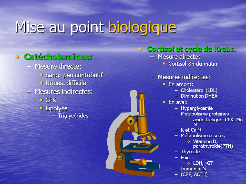 Mise au point biologique Catécholamines: Catécholamines: –Mesure directe: Sang: peu contributif Sang: peu contributif Urines: difficile Urines: diffic