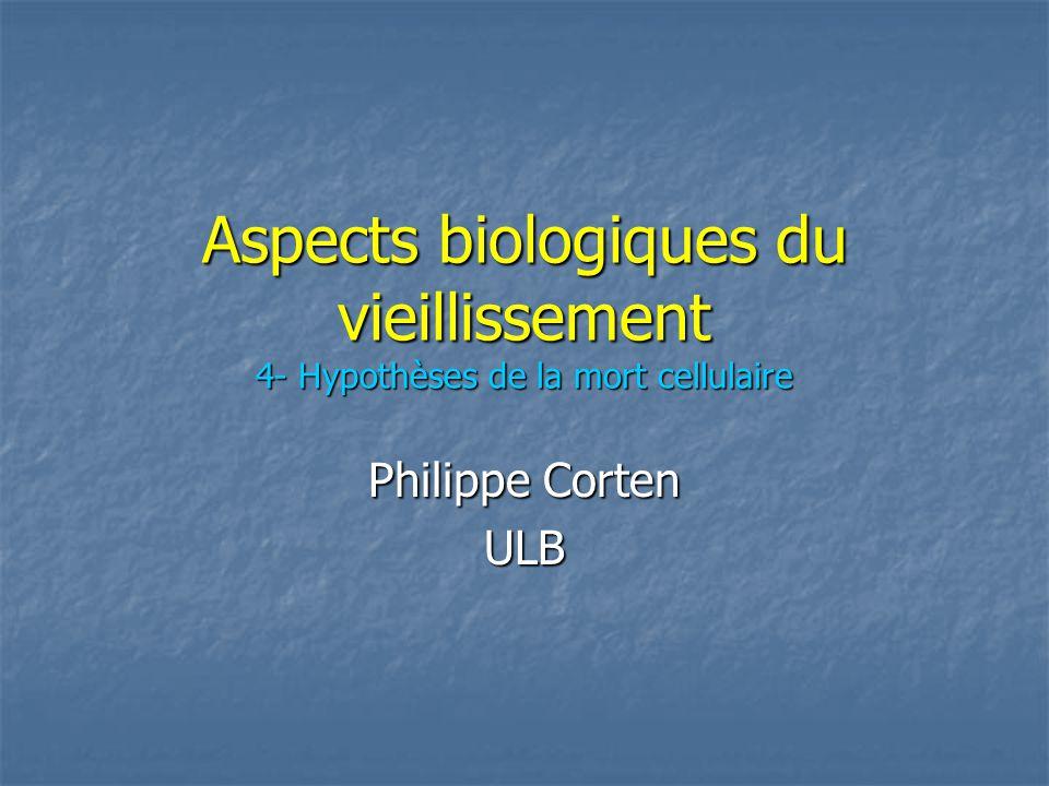 Aspects biologiques du vieillissement 4- Hypothèses de la mort cellulaire Philippe Corten ULB