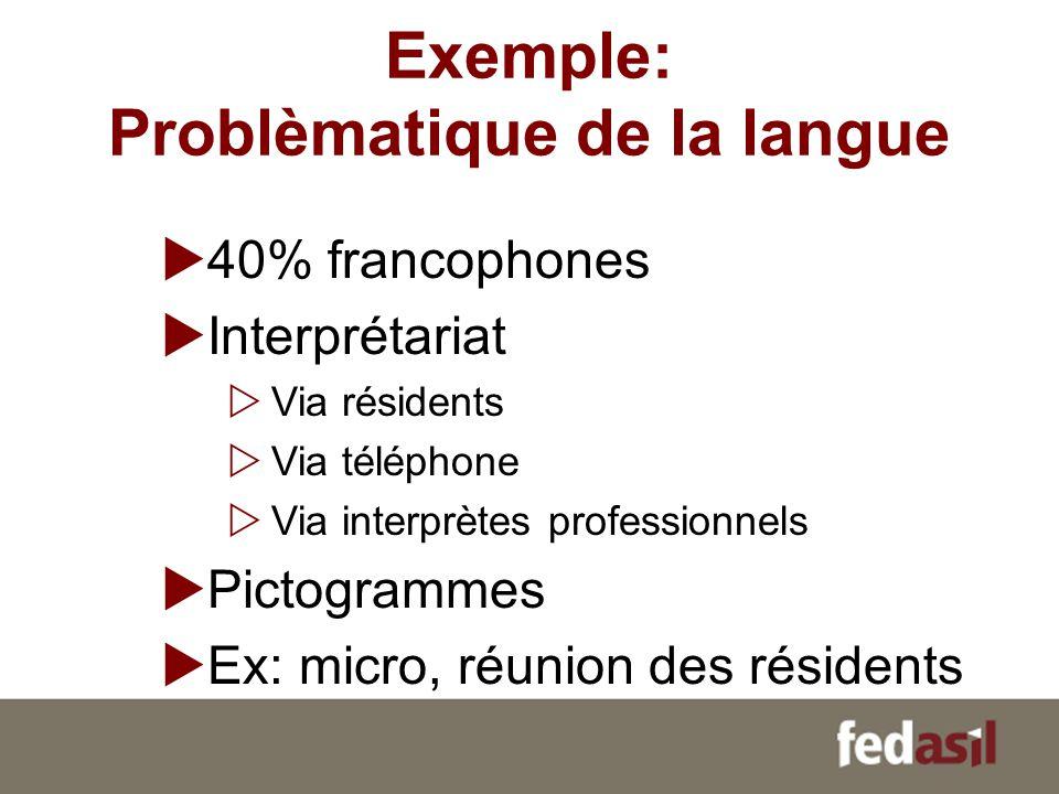 Exemple: Problèmatique de la langue 40% francophones Interprétariat Via résidents Via téléphone Via interprètes professionnels Pictogrammes Ex: micro,