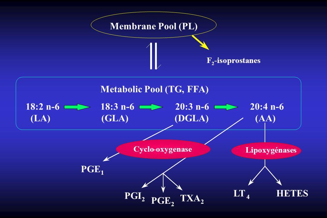 Membrane Pool (PL) F 2 -isoprostanes Metabolic Pool (TG, FFA) 18:2 n-6 18:3 n-6 20:3 n-6 20:4 n-6 (LA) (GLA) (DGLA) (AA) Cyclo-oxygenase PGI 2 PGE 2 TXA 2 PGE 1 Lipoxygénases LT 4 HETES