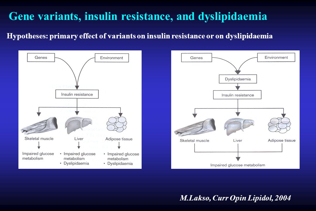 Gene variants, insulin resistance, and dyslipidaemia M.Lakso, Curr Opin Lipidol, 2004 Hypotheses: primary effect of variants on insulin resistance or