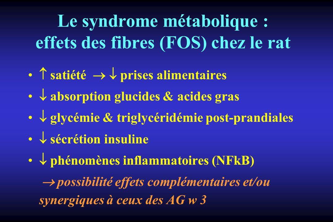 Le syndrome métabolique : effets des fibres (FOS) chez le rat satiété prises alimentaires absorption glucides & acides gras glycémie & triglycéridémie post-prandiales sécrétion insuline phénomènes inflammatoires (NFkB) possibilité effets complémentaires et/ou synergiques à ceux des AG w 3