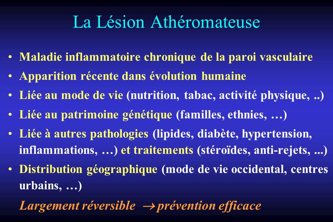 La Lésion Athéromateuse Maladie inflammatoire chronique de la paroi vasculaire Apparition récente dans évolution humaine Liée au mode de vie (nutritio