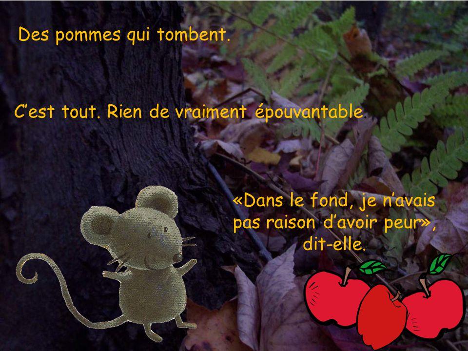 Sous une branche, petite souris entend quelque chose frapper le sol. Boum! Boum! Boum! Quest-ce que cest?