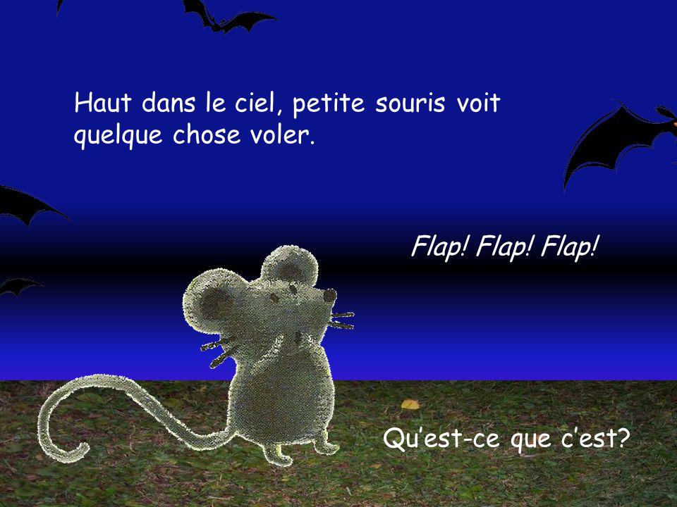 Un soir doctobre où la lune ronde brille dans le ciel, petite souris se promène et entend des bruits autour delle.