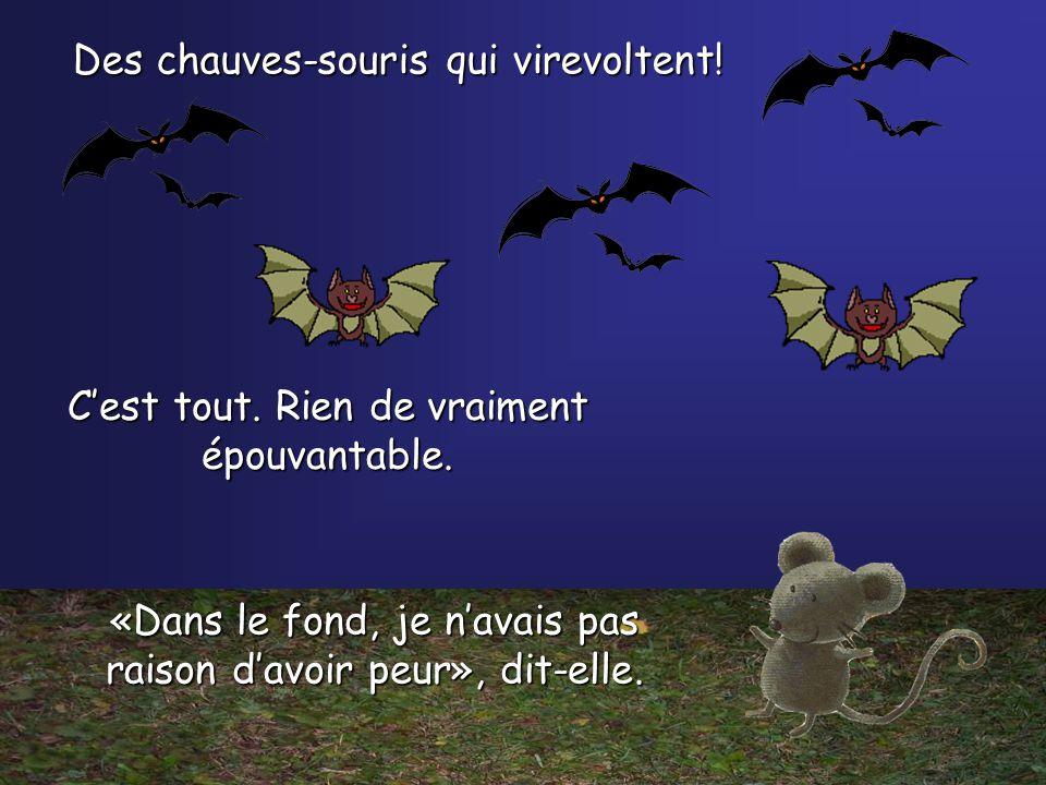 Haut dans le ciel, petite souris voit quelque chose voler. Quest-ce que cest? Flap! Flap! Flap!