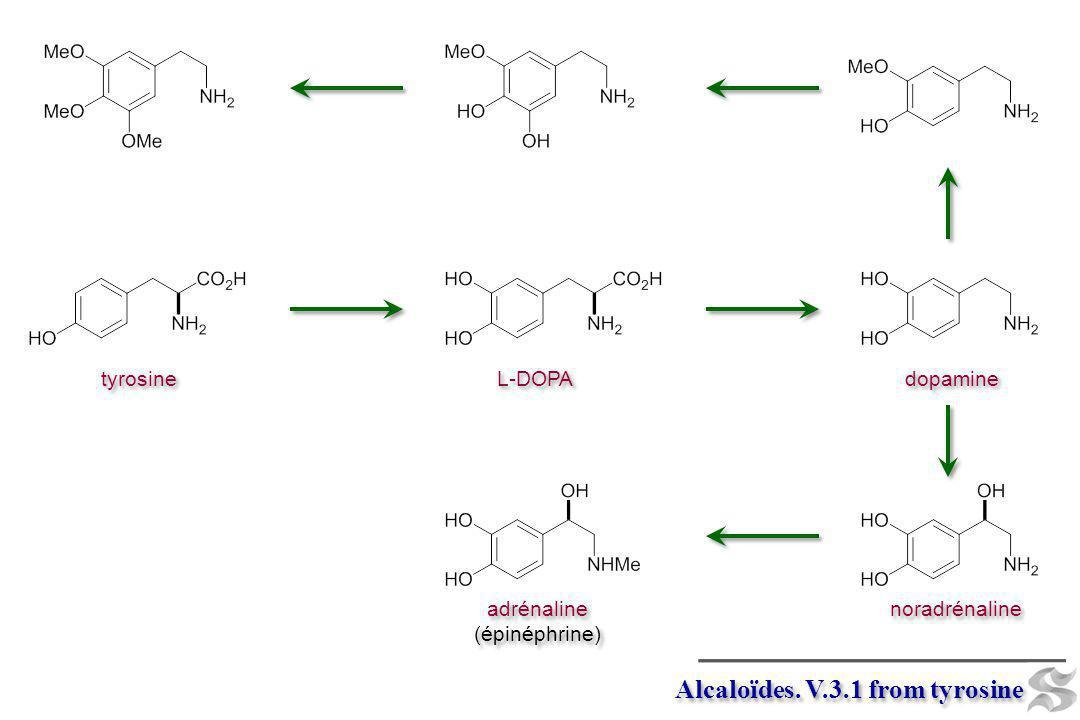 Alcaloïdes. V.3.1 from tyrosine tyrosine L-DOPA dopamine noradrénaline adrénaline (épinéphrine) adrénaline (épinéphrine)