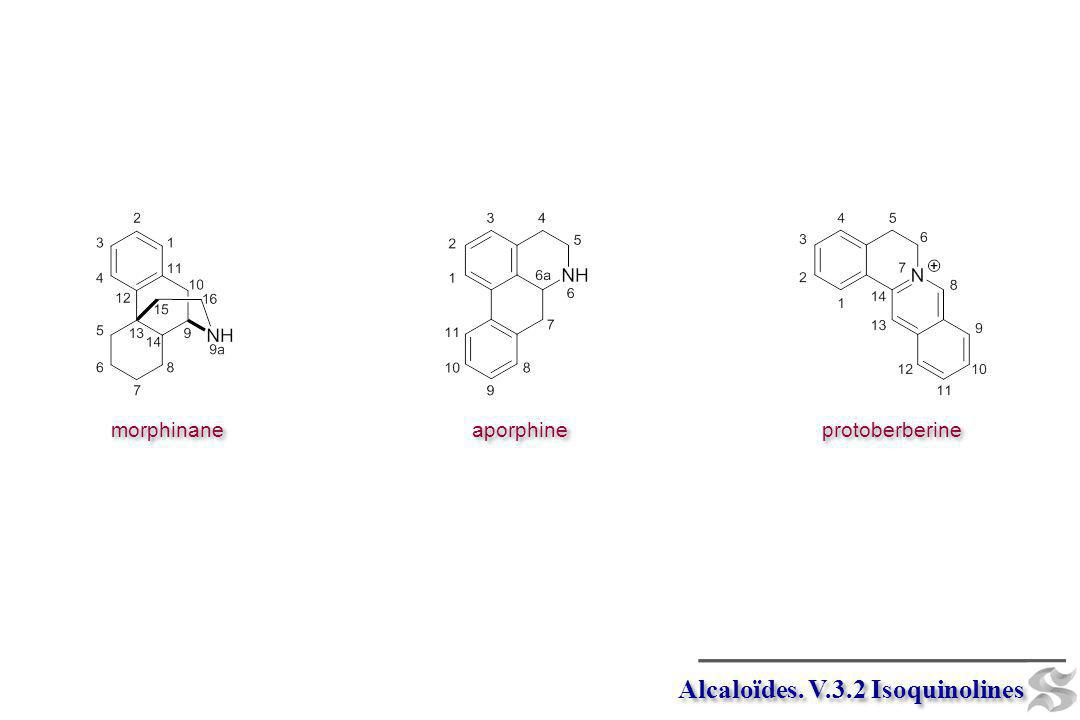 Alcaloïdes. V.3.2 Isoquinolines protoberberine aporphine morphinane