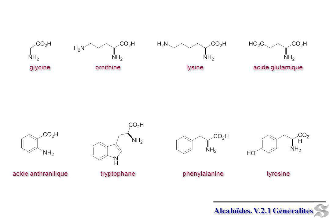 Alcaloïdes. V.2.1 Généralités ornithine lysine acide glutamique glycine acide anthranilique tryptophane phénylalanine tyrosine