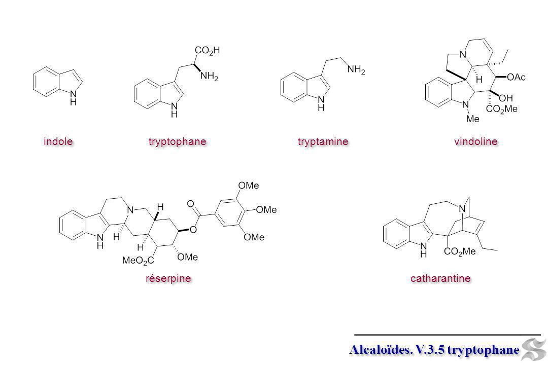 tryptophane Psilocin 1.peroxidase 2. decarboxylase 3.