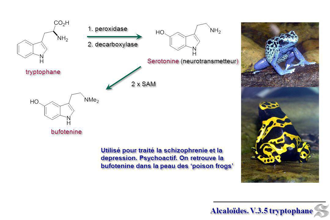 tryptophane Utilisé pour traité la schizophrenie et la depression. Psychoactif. On retrouve la bufotenine dans la peau des poison frogs Alcaloïdes. V.