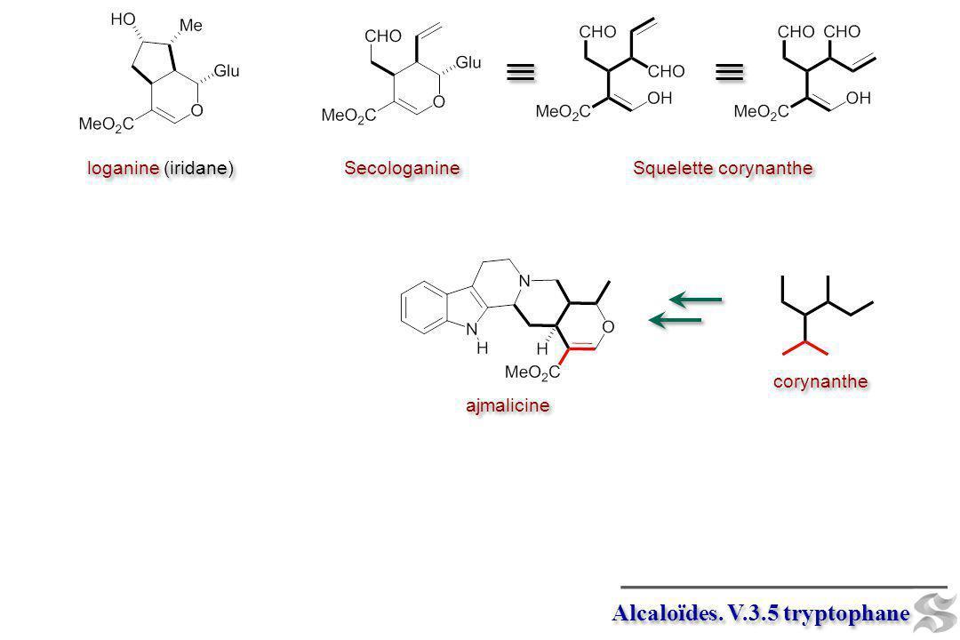 loganine (iridane) Secologanine Squelette corynanthe corynanthe ajmalicine