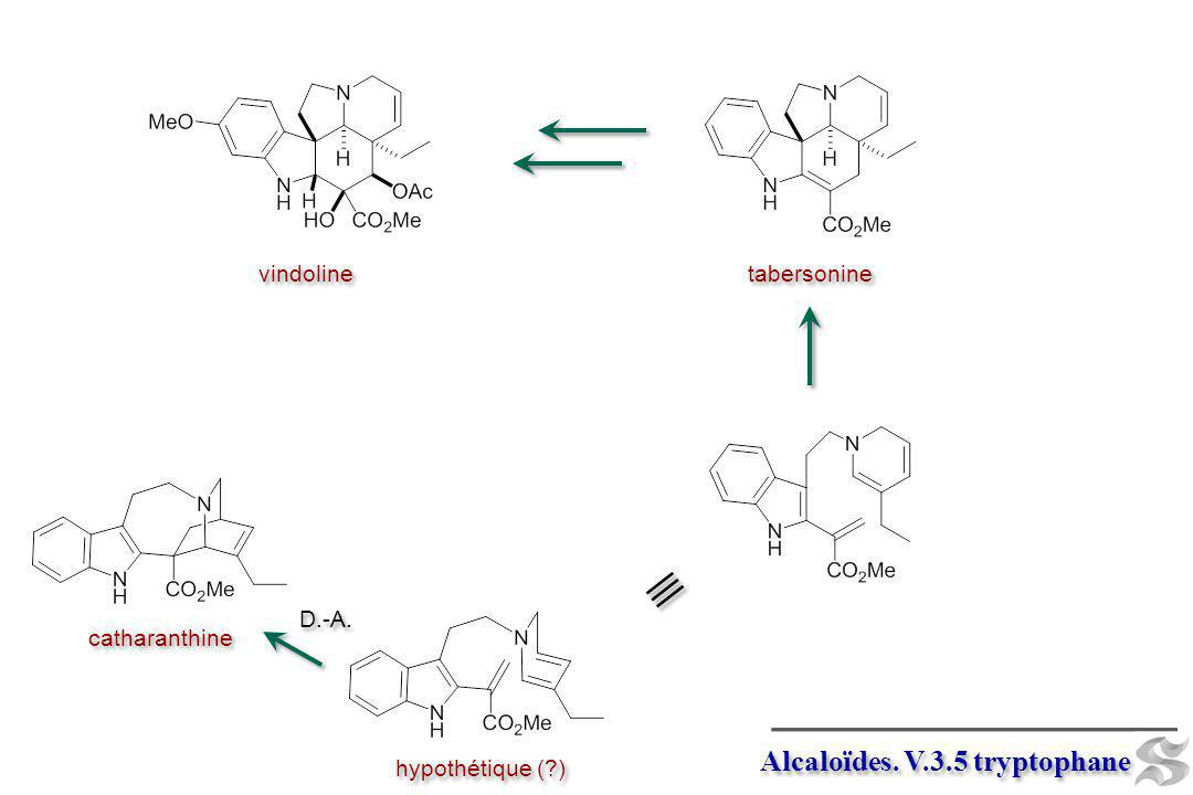 Alcaloïdes. V.3.5 tryptophane catharanthine D.-A. hypothétique (?) tabersonine vindoline