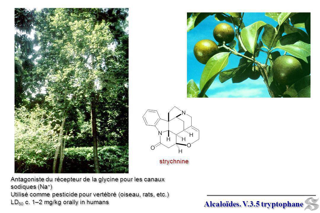 Alcaloïdes. V.3.5 tryptophane strychnine Antagoniste du récepteur de la glycine pour les canaux sodiques (Na + ) Utilisé comme pesticide pour vertébré