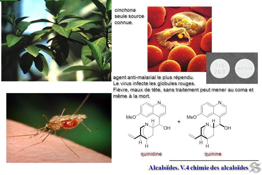 Alcaloïdes. V.4 chimie des alcaloïdes + + quinine quinidine cinchona seule source connue. cinchona seule source connue. agent anti-malarial le plus ré