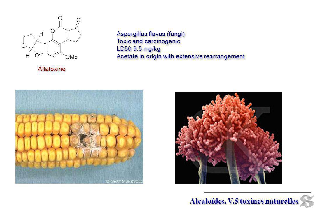 Aspergillus flavus (fungi) Toxic and carcinogenic LD50 9.5 mg/kg Acetate in origin with extensive rearrangement Aspergillus flavus (fungi) Toxic and c