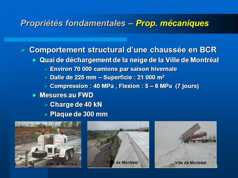 52 Propriétés fondamentales – Prop. mécaniques Comportement structural dune chaussée en BCR Comportement structural dune chaussée en BCR Quai de décha