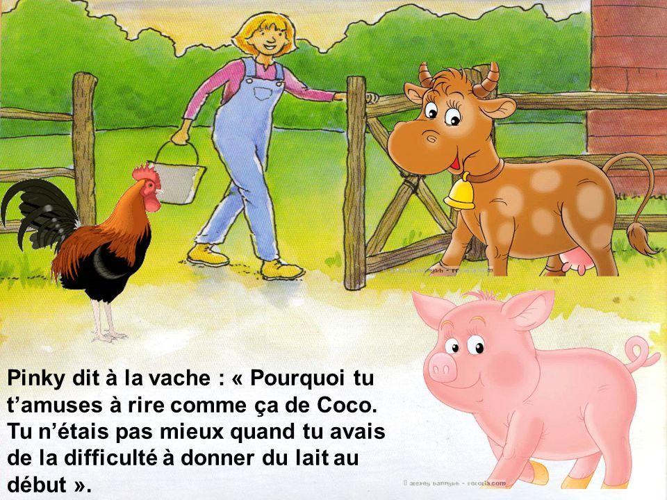 Pinky, le cochon, vit le coq dans cet état et décida daller le consoler.