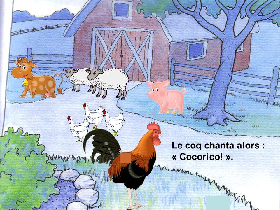 Le lendemain matin, au levé du soleil, le cochon se mit à grogner, la vache à meugler, les moutons à bêler et les poules à glousser en cœur.