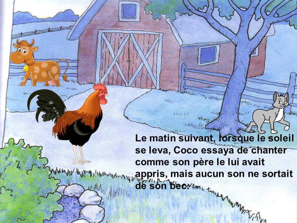Arrivé à la nouvelle ferme, le coq se sentit observé par les autres animaux, mais aucun dentre eux ne lui adressa la parole.