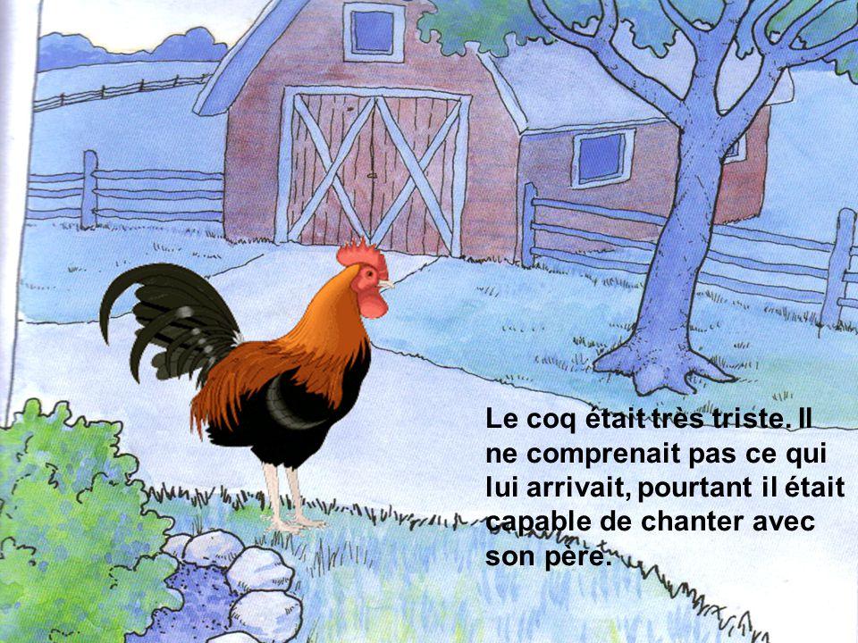 Le coq chanta alors : « Cocorico! ».