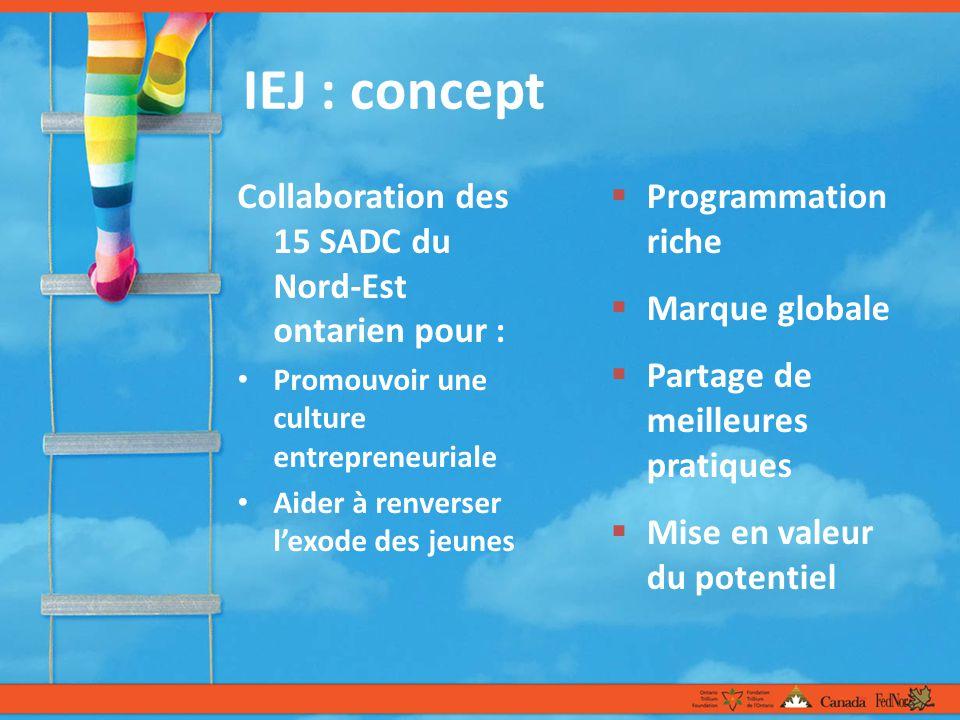 IEJ : concept Collaboration des 15 SADC du Nord-Est ontarien pour : Promouvoir une culture entrepreneuriale Aider à renverser lexode des jeunes Programmation riche Marque globale Partage de meilleures pratiques Mise en valeur du potentiel