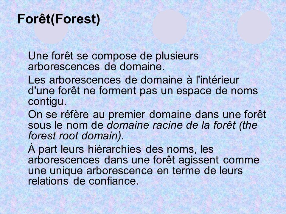 Forêt(Forest) Une forêt se compose de plusieurs arborescences de domaine. Les arborescences de domaine à l'intérieur d'une forêt ne forment pas un esp