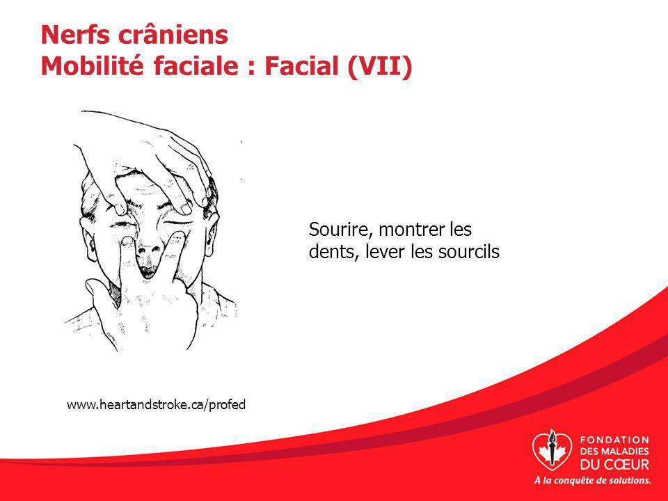 Nerfs crâniens Mobilité faciale : Facial (VII) Sourire, montrer les dents, lever les sourcils www.heartandstroke.ca/profed