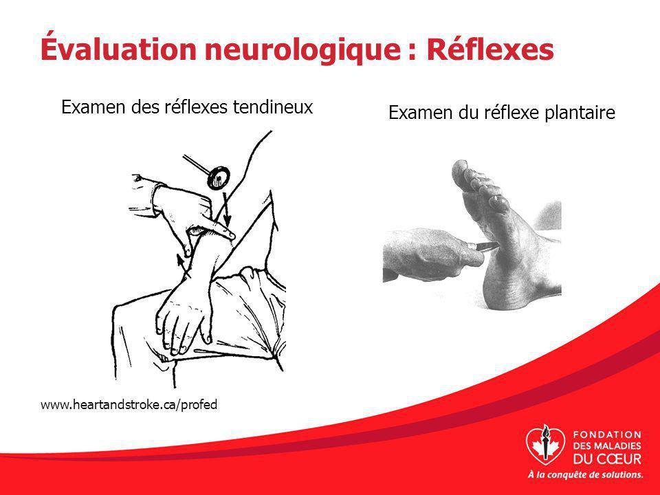 Évaluation neurologique : Réflexes Examen du réflexe plantaire Examen des réflexes tendineux www.heartandstroke.ca/profed