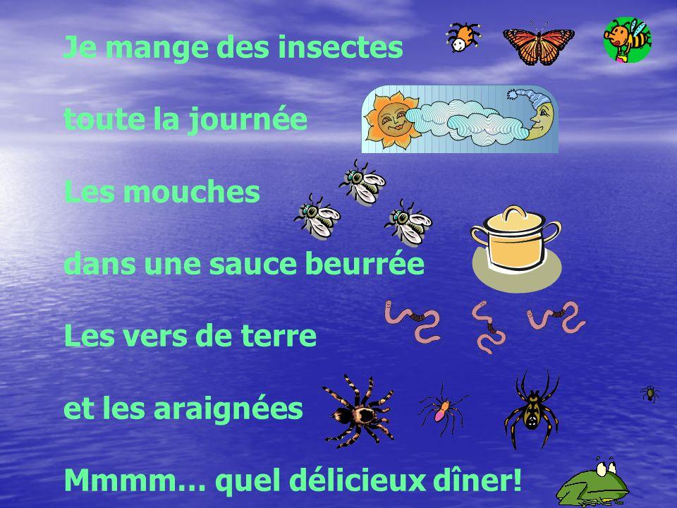 Je mange des insectes toute la journée Les mouches dans une sauce beurrée Les vers de terre et les araignées Mmmm… quel délicieux dîner!