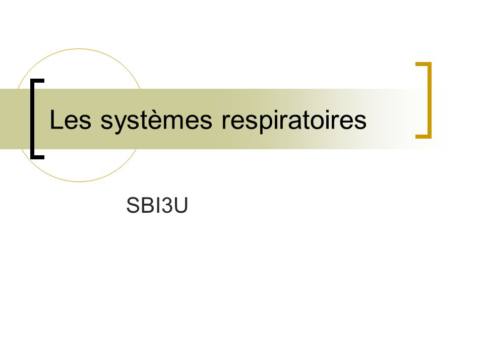 Les systèmes respiratoires SBI3U