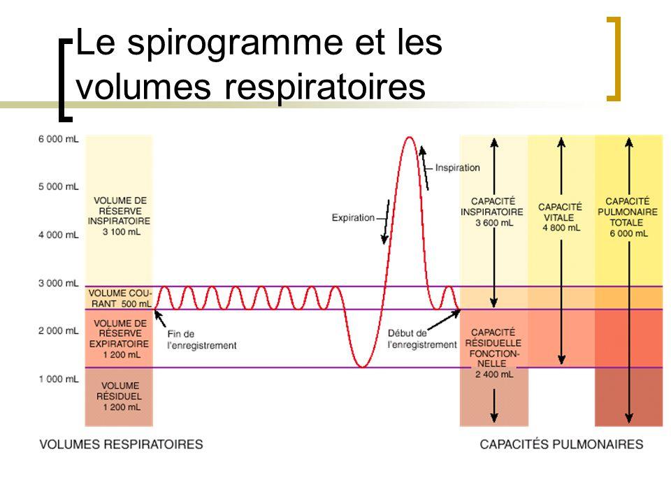 Le spirogramme et les volumes respiratoires