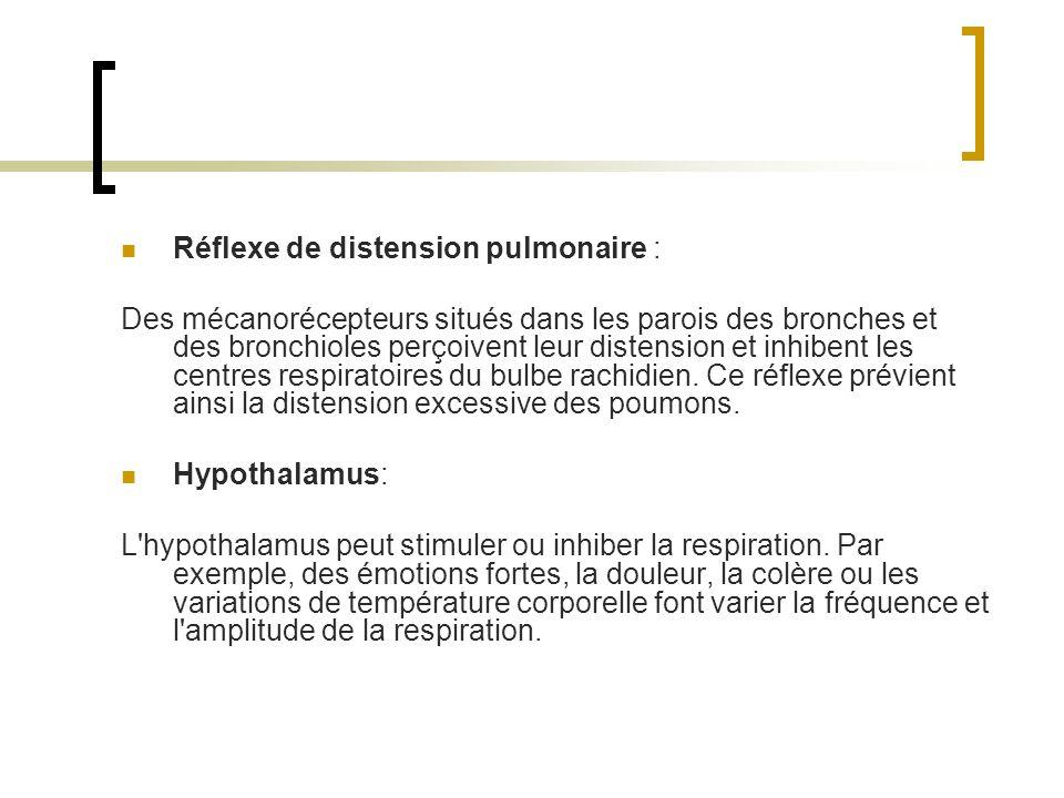 Réflexe de distension pulmonaire : Des mécanorécepteurs situés dans les parois des bronches et des bronchioles perçoivent leur distension et inhibent