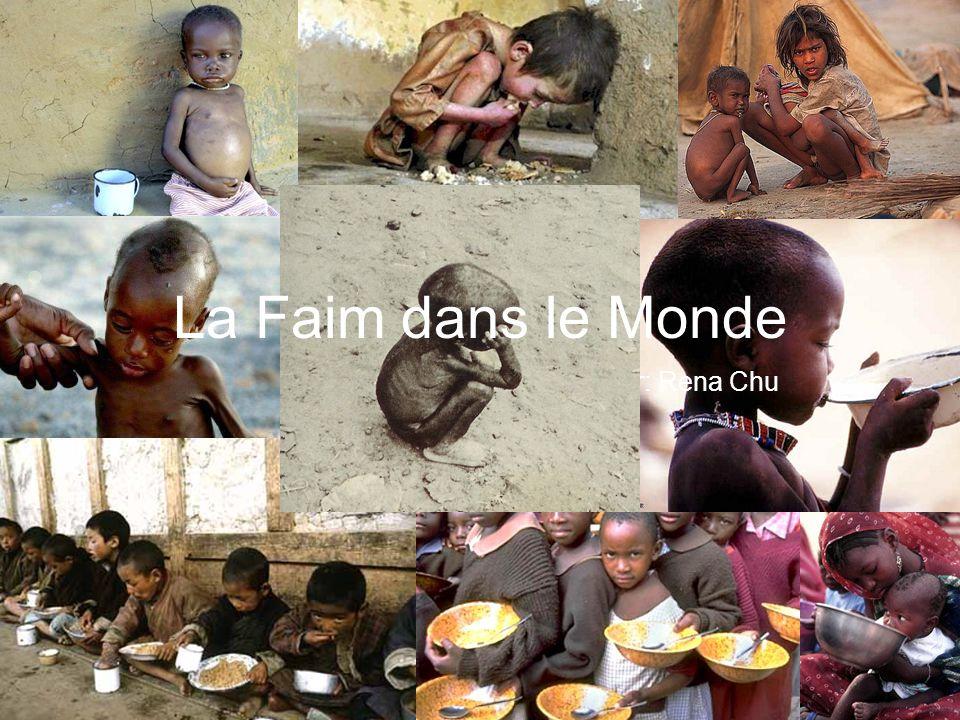 République d Haïti Le Darfur, du Soudan La ville de Gaza Le Népal
