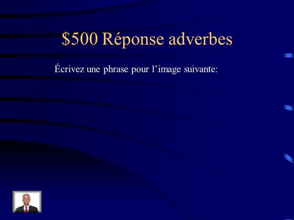 $500 Question adjectifs Écrivez une phrase pour limage suivante: