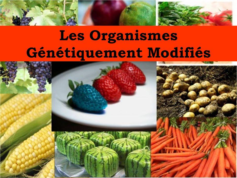 Les Organismes Génétiquement Modifiés