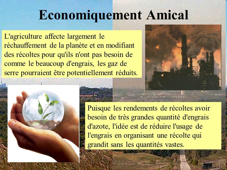 Economiquement Amical L'agriculture affecte largement le réchauffement de la planète et en modifiant des récoltes pour qu'ils n'ont pas besoin de comm