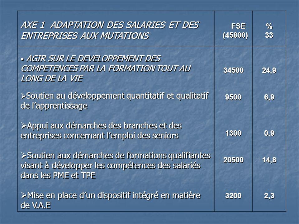 AXE 1 ADAPTATION DES SALARIES ET DES ENTREPRISES AUX MUTATIONS FSE FSE (45800) (45800)%33 AGIR SUR LE DEVELOPPEMENT DES COMPETENCES PAR LA FORMATION TOUT AU LONG DE LA VIE AGIR SUR LE DEVELOPPEMENT DES COMPETENCES PAR LA FORMATION TOUT AU LONG DE LA VIE Soutien au développement quantitatif et qualitatif de lapprentissage Soutien au développement quantitatif et qualitatif de lapprentissage Appui aux démarches des branches et des entreprises concernant lemploi des seniors Appui aux démarches des branches et des entreprises concernant lemploi des seniors Soutien aux démarches de formations qualifiantes visant à développer les compétences des salariés dans les PME et TPE Soutien aux démarches de formations qualifiantes visant à développer les compétences des salariés dans les PME et TPE Mise en place dun dispositif intégré en matière de V.A.E Mise en place dun dispositif intégré en matière de V.A.E 3450095001300205003200 24,96,90,914,82,3