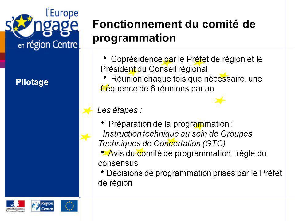 Le comité de programmation Préfet de région ou son représentant Président du Conseil régional ou son représentant Coprésidence Composition : une forma