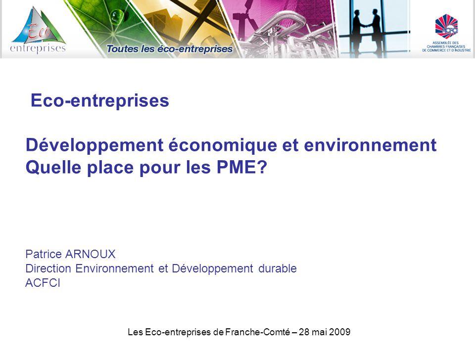 Les Eco-entreprises de Franche-Comté – 28 mai 2009 Eco-entreprises Développement économique et environnement Quelle place pour les PME.