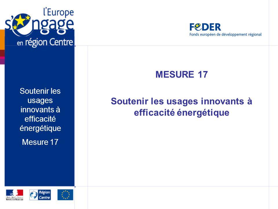 MESURE 17 Soutenir les usages innovants à efficacité énergétique Mesure 17