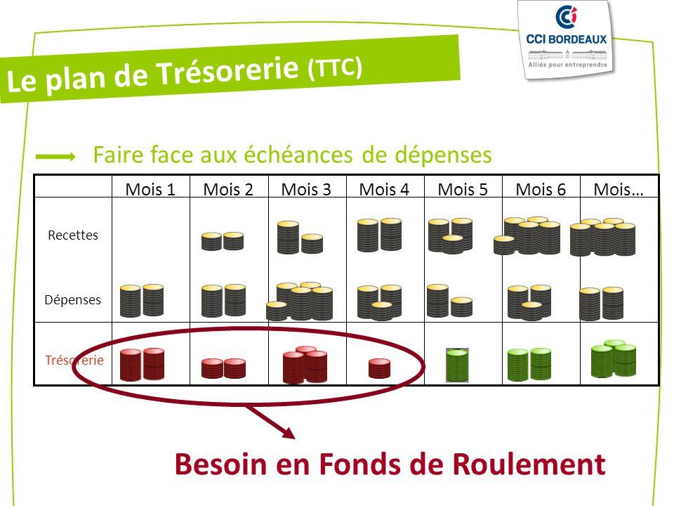 Trésorerie Recettes Dépenses Mois…Mois 6Mois 5Mois 4Mois 3Mois 2Mois 1 Faire face aux échéances de dépenses Besoin en Fonds de Roulement Le plan de Trésorerie (TTC)