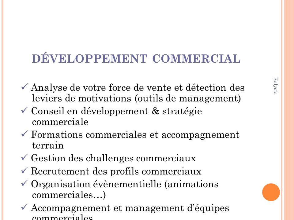 Kalysta DÉVELOPPEMENT COMMERCIAL Analyse de votre force de vente et détection des leviers de motivations (outils de management) Conseil en développeme