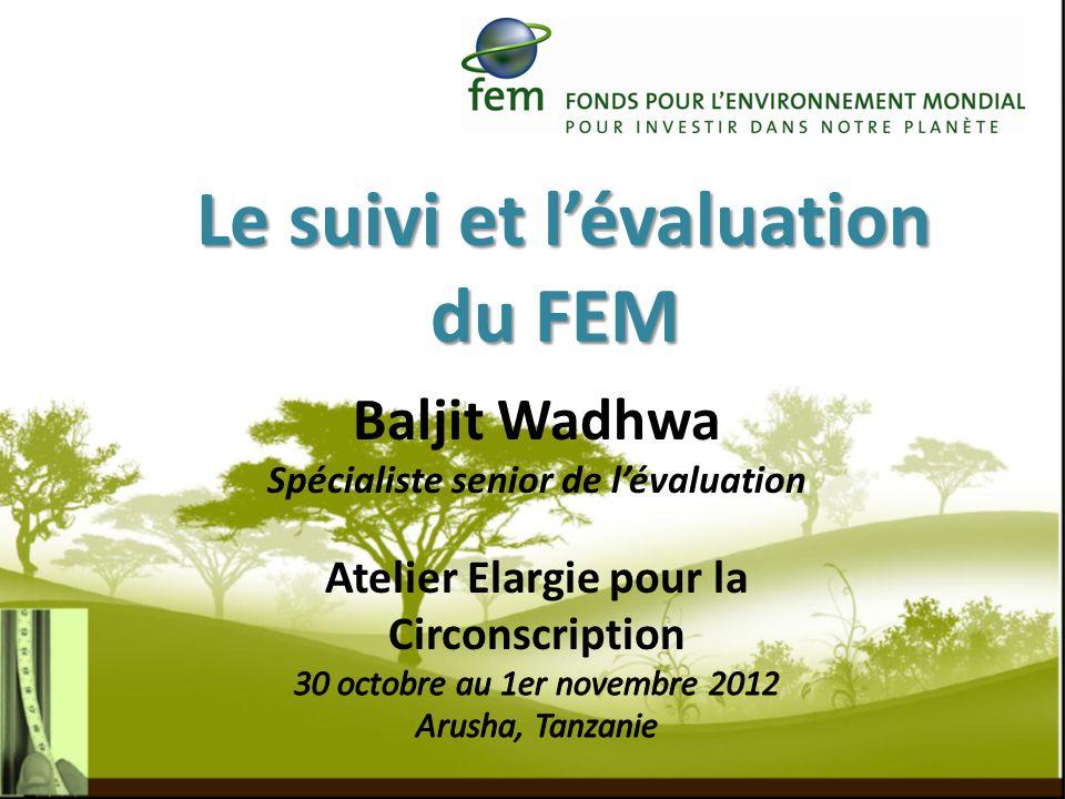 Le suivi et lévaluation du FEM