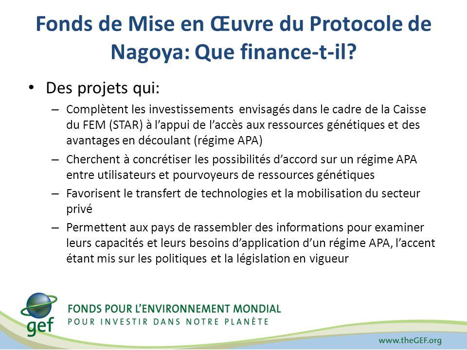 Fonds de Mise en Œuvre du Protocole de Nagoya: Que finance-t-il? Des projets qui: – Complètent les investissements envisagés dans le cadre de la Caiss