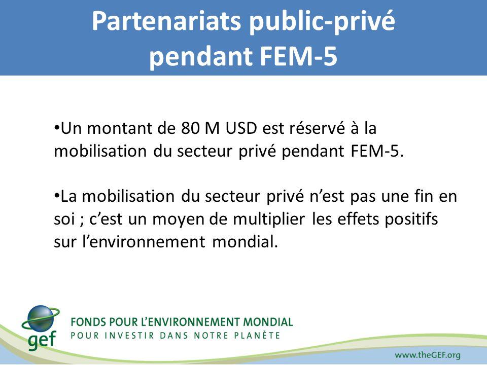 Partenariats public-privé pendant FEM-5 Un montant de 80 M USD est réservé à la mobilisation du secteur privé pendant FEM-5. La mobilisation du secteu