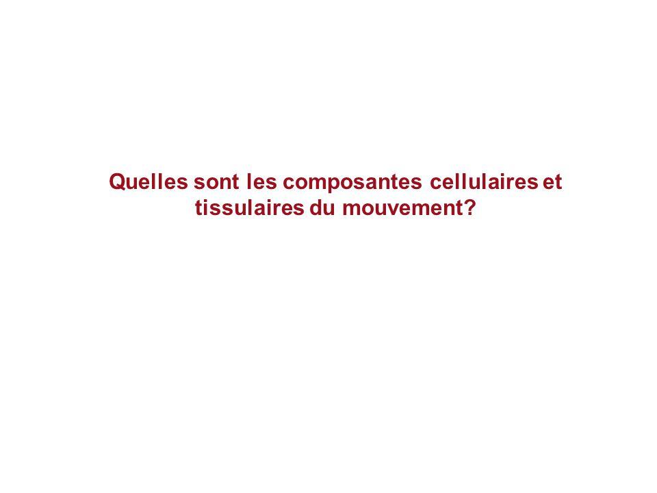 Quelles sont les composantes cellulaires et tissulaires du mouvement?