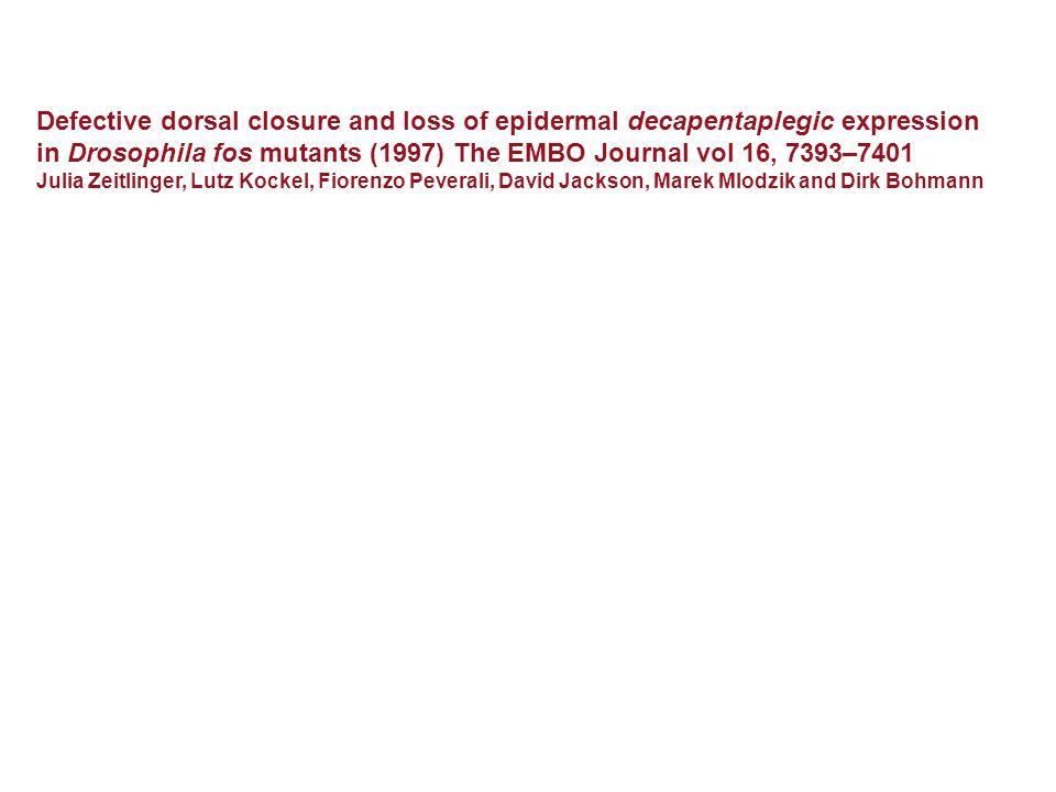 Defective dorsal closure and loss of epidermal decapentaplegic expression in Drosophila fos mutants (1997) The EMBO Journal vol 16, 7393–7401 Julia Zeitlinger, Lutz Kockel, Fiorenzo Peverali, David Jackson, Marek Mlodzik and Dirk Bohmann