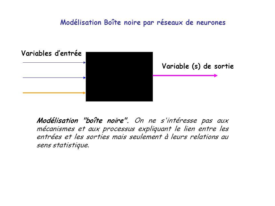 Modélisation Boîte noire par réseaux de neurones Variables dentrée Variable (s) de sortie Modélisation