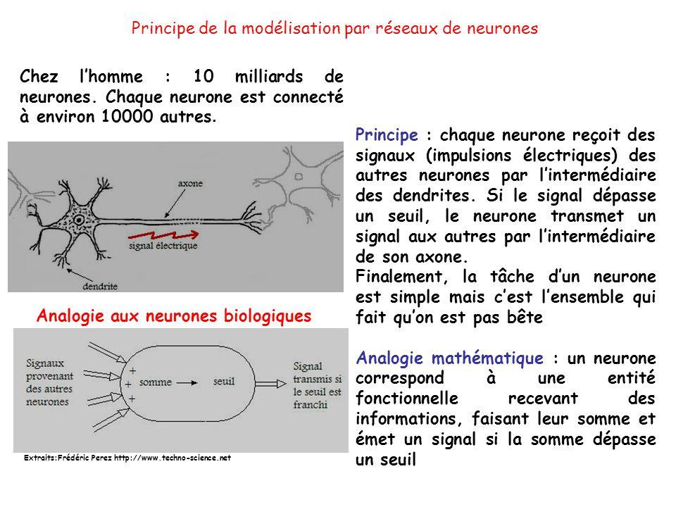 Principe de la modélisation par réseaux de neurones Analogie aux neurones biologiques Principe : chaque neurone reçoit des signaux (impulsions électriques) des autres neurones par lintermédiaire des dendrites.